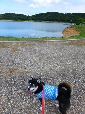 2017初立池公園 (8)