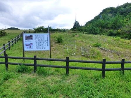 2017初立池公園 (20)