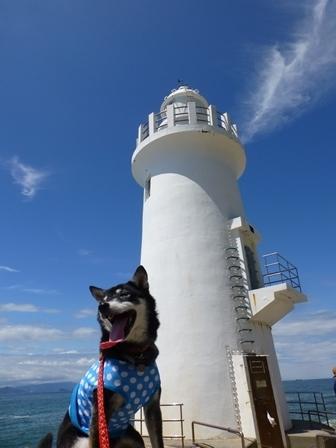 2017伊良湖岬20