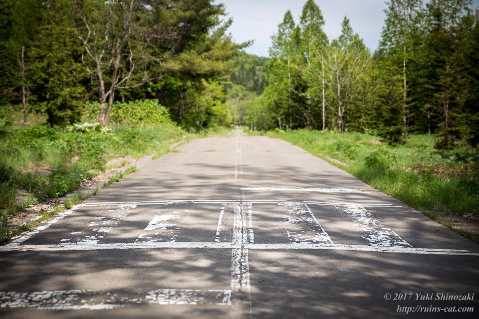 横断歩道その2 正面より