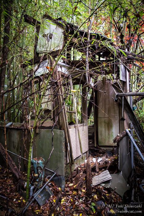 【廃墟写真】K医院_西側の別棟その1。ここも竹にやられている。