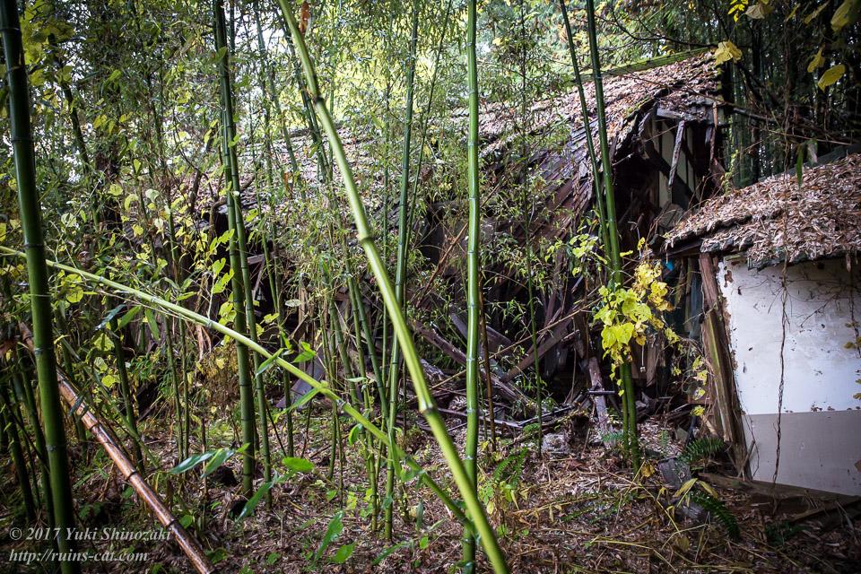 【廃墟写真】K医院_北側の住居外観