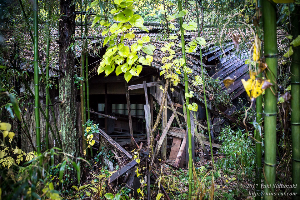 【廃墟写真】K医院_北側の住居から出た所