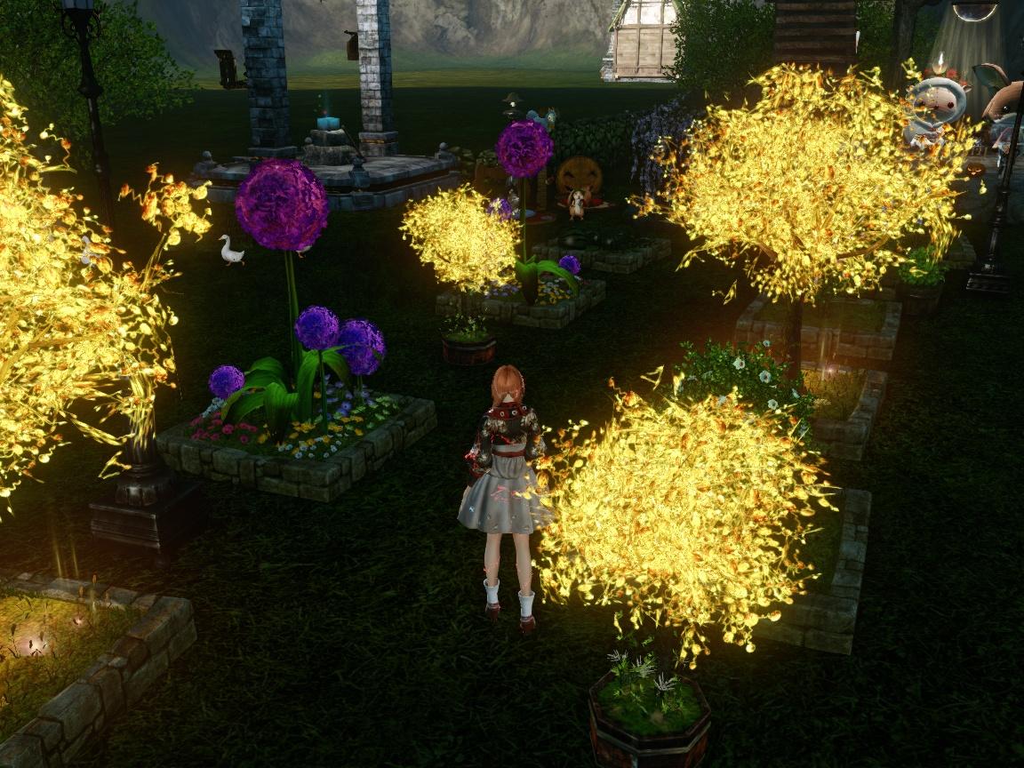 ハヌイイベの花壇