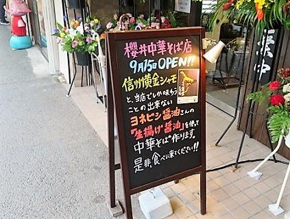 sakurai-cs3 (2)
