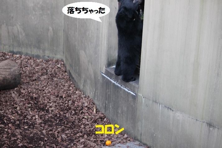 100 - コピー