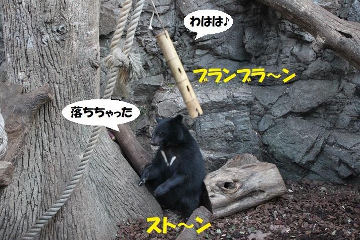 197 - コピー (2)