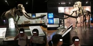 浜松博物館7