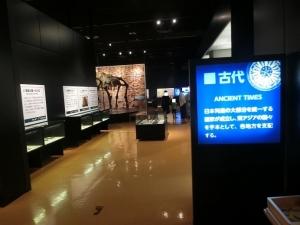 浜松博物館11