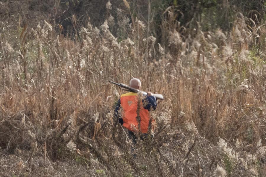 hunter-DSCN1462.jpg