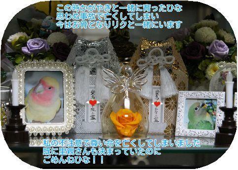 ④ひなの霊碑