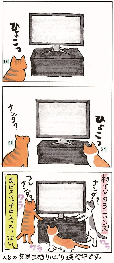初めてのテレビ① 2-2
