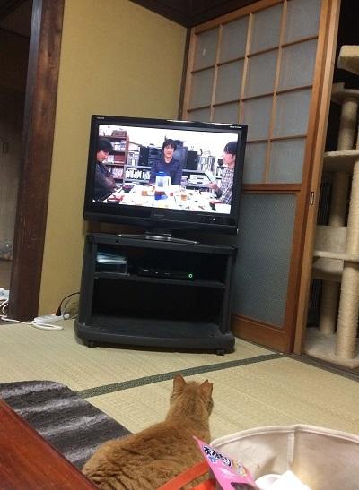 初めてのテレビ③