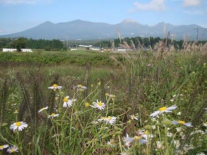 山の写真2