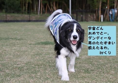 くりちゃんより