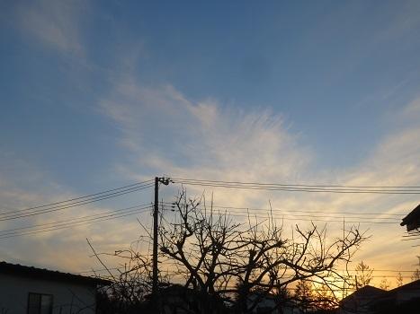 IMG_7830テ(2)