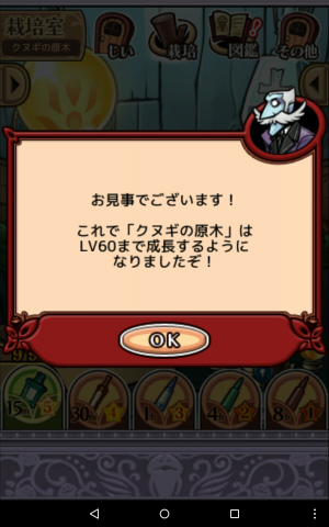 2017クヌギの原木_009
