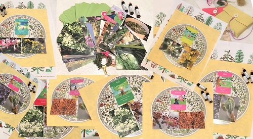 flower cards2