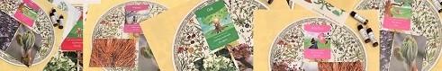 flower cards2-2