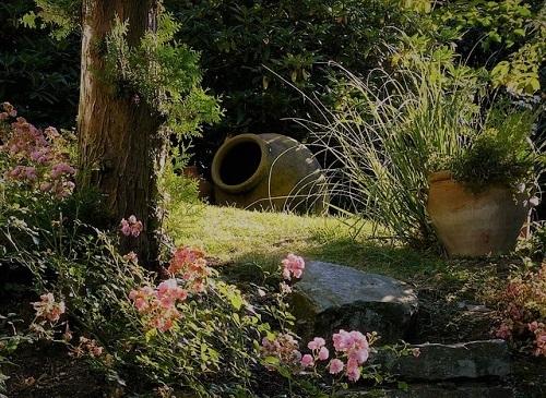 garden1001.jpg