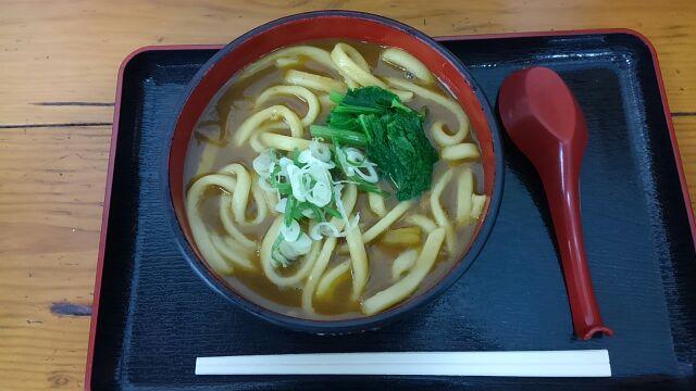 道の駅月夜野矢瀬親水公園カレーうどん2017