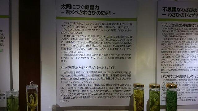 大王わさび農場 百年記念館 説明