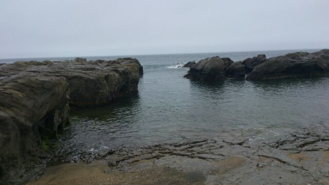 布良海岸岩場