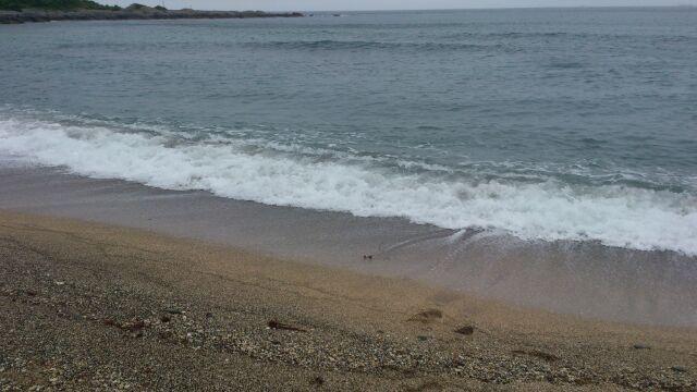布良海岸砂浜2012