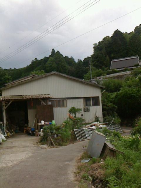 moblog_510d627c.jpg