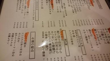 DSC_4954mini.jpg