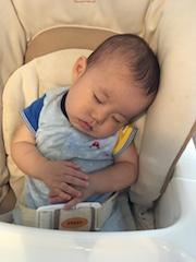 手を揃えて眠るツグ