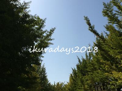 20181021_中島公園1