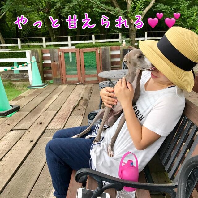 fc2blog_201707122223041ae.jpg