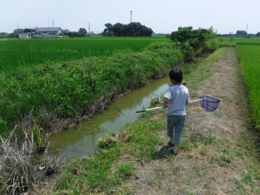 さいたま水族館 (4)