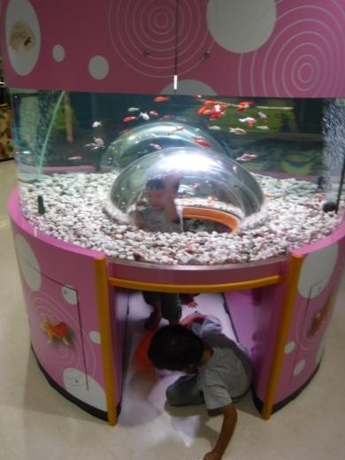 さいたま水族館 (22)