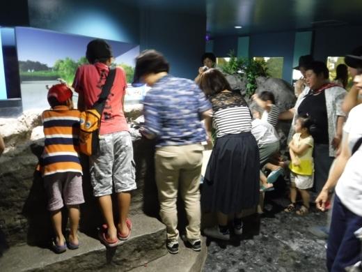 さいたま水族館 (38)