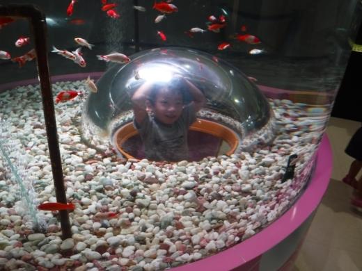 さいたま水族館 (40)