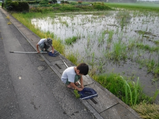 さいたま水族館 (49)