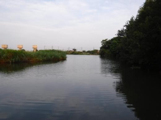 さいたま水族館 (52)