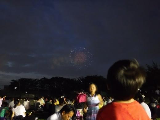 草加公園花火大会 (8)