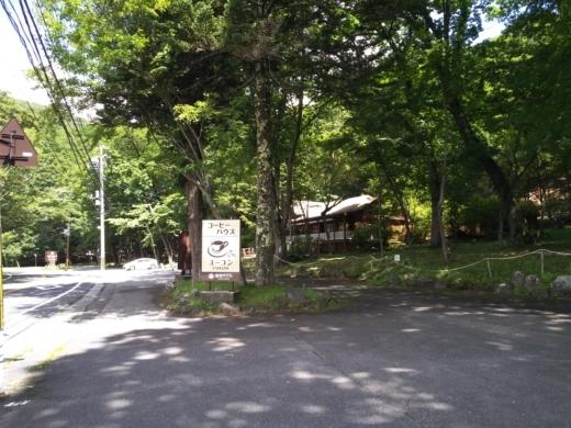 中禅寺湖のおかっぱり釣り (10)