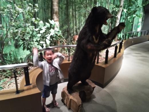 栃木自然博物館 (8)