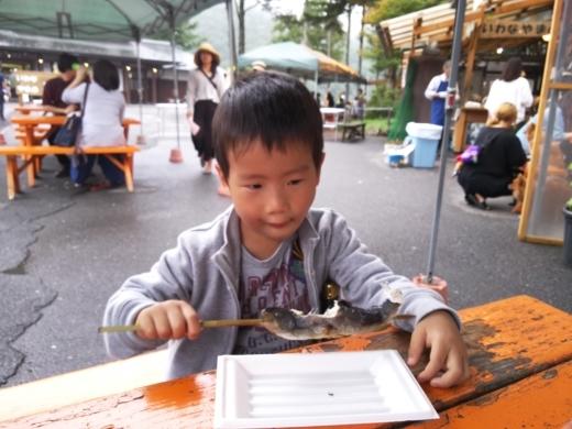栃木自然博物館 (13)