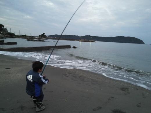 冨浦漁港で釣り (15)
