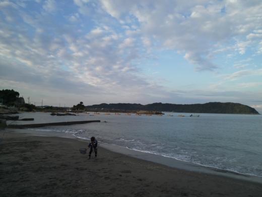 冨浦漁港で釣り (20)
