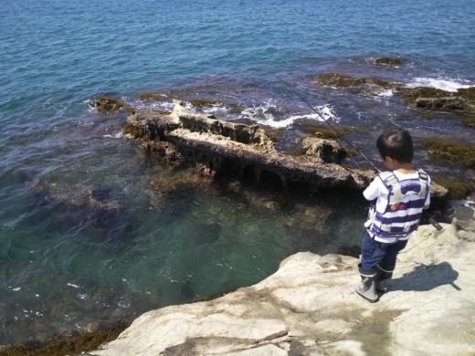 冨浦漁港で釣り (52)