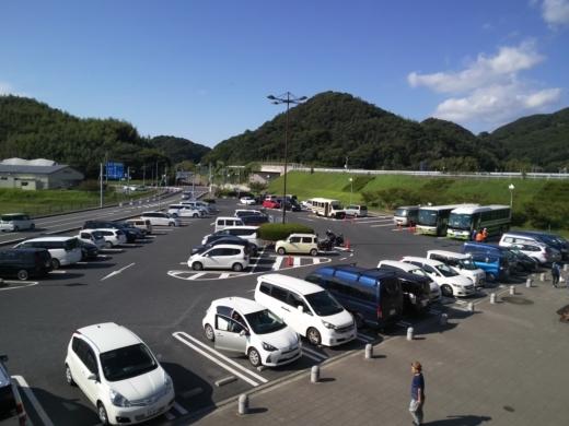 冨浦漁港で釣り (62)