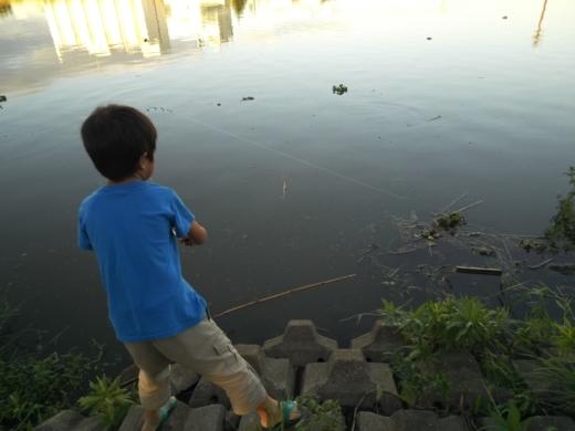 中川(三郷)釣り (24)
