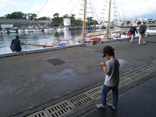 沼津港釣り (8)
