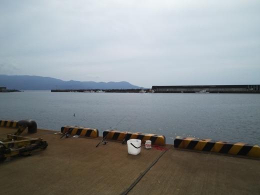 沼津港釣り (11)